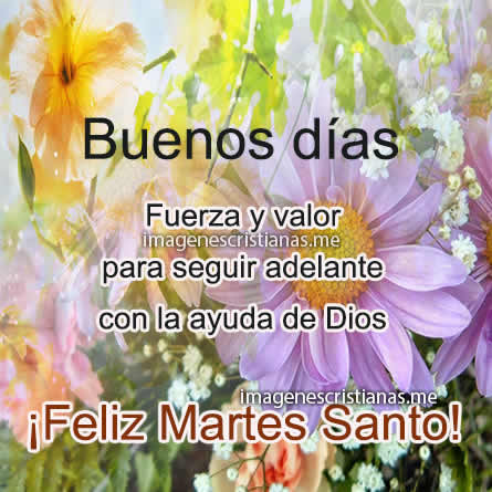 Imagenes Feliz Martes Santo Frases Bonitas