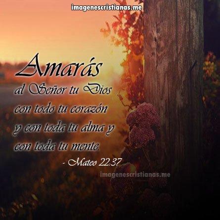 Amaras A Dios Con Toda Tu Alma