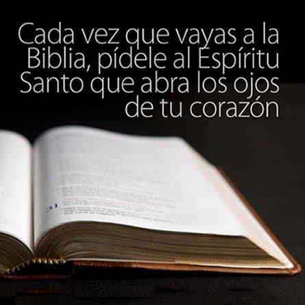 Frases Cristianas Sobre Biblia