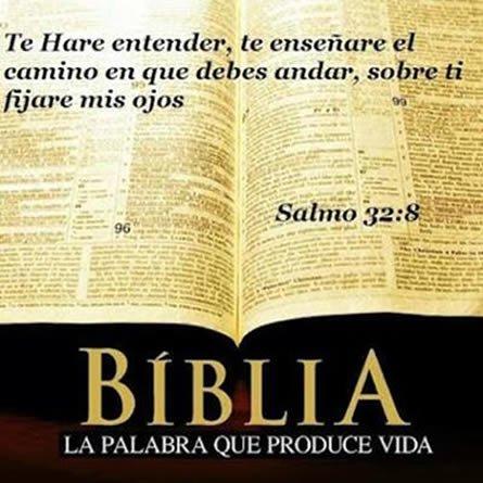 Biblia Palabra De Vida