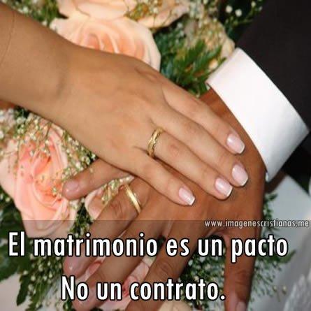 Frases Cristianas Para El Matrimonio