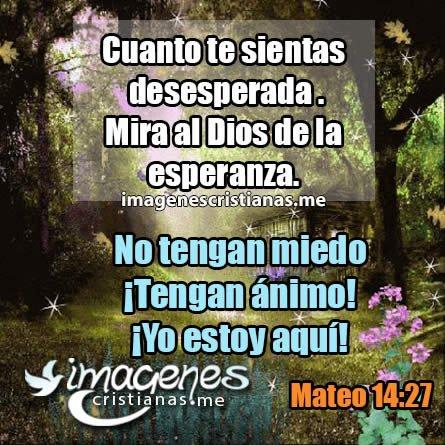 Imagenes Cristianas Mujeres 2019 Frases Reflexiones Bonitas