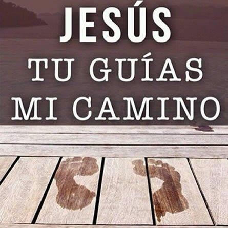 Imagenes Jesus Tu Guias Mi Camino