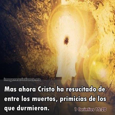Imagenes Cristianas: Jesus Ha Resucitado Entre Los Muertos