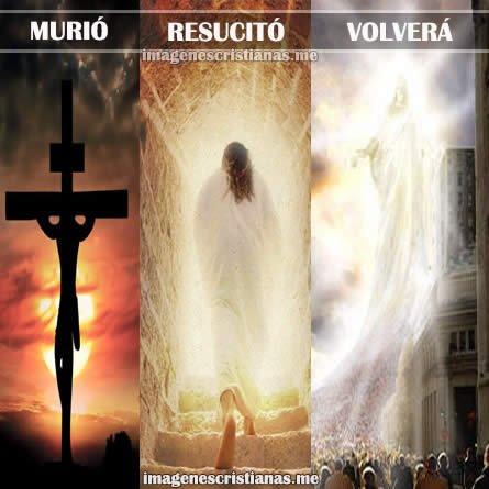 Jesus Murio Resucito Y Volvera Reflexiones Cristianas
