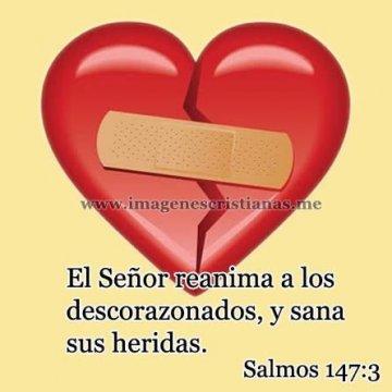 El Señor Sana Las Heridas Salmos
