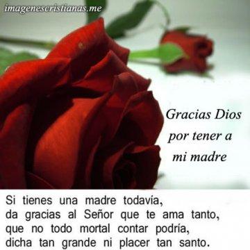 Agradeciendo A Dios Por Mi Madre