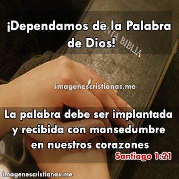 Frases Biblicas Dependamos De La Palabra De Dios
