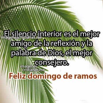 Frases Cristianas De Domingo De Ramos Reflexiones