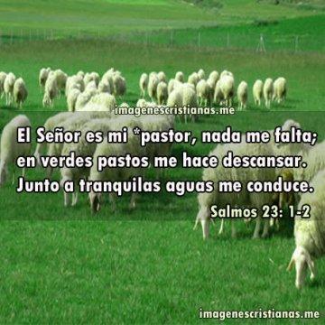 Imagenes Biblicas El Señor Es Mi Pastor