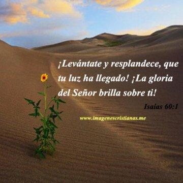 Imagenes Biblicas Isaias 60:1