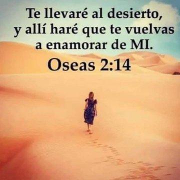Imagenes Cristianas Dios Te Lleva Al Desierto Para Cambiarte Reflexiones