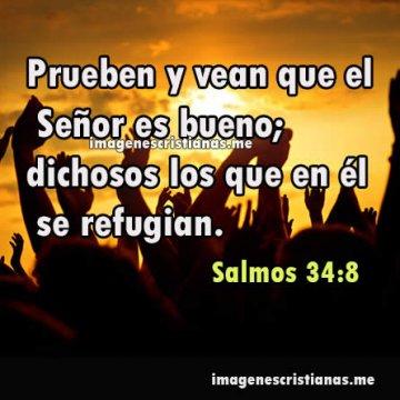Imagenes Cristianas Jovenes 2019 Frases Bonitas