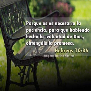 Imagenes Cristianas La Paciencia En Dios Frases Y Reflexiones