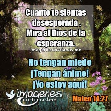 Frases Cristianas De Jesucristo