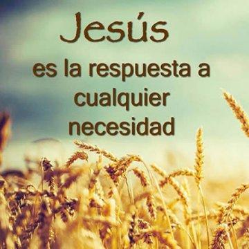 Jesus Es La Respuesta A Cualquier Necesidad