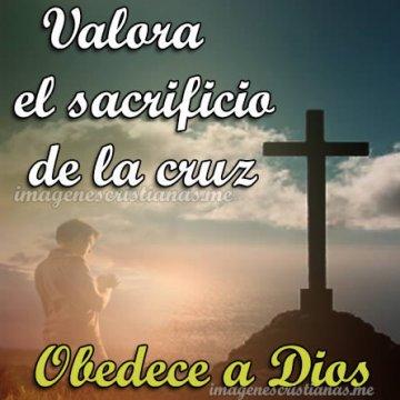 Valora El Sacrificio De La Cruz Obedece A Dios